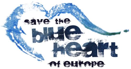 blue heart logo_transparent